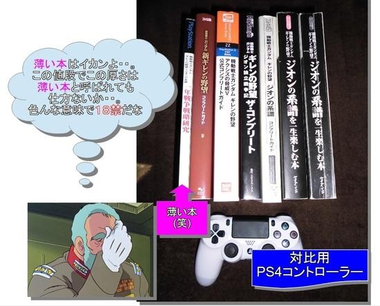 薄い本(攻略本).jpg
